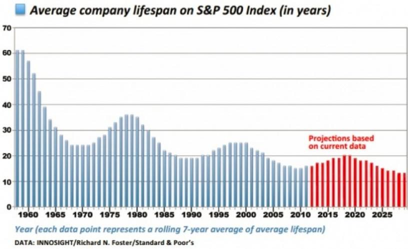 average-life-span-companies