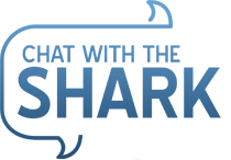 chat-with-shark